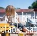 birdfinger_7.jpg